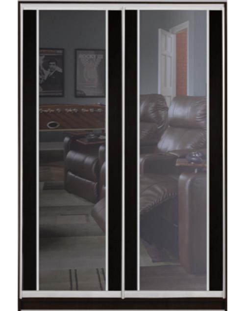 Шкаф-купе Стандарт двухдверный Комбинированный фасад